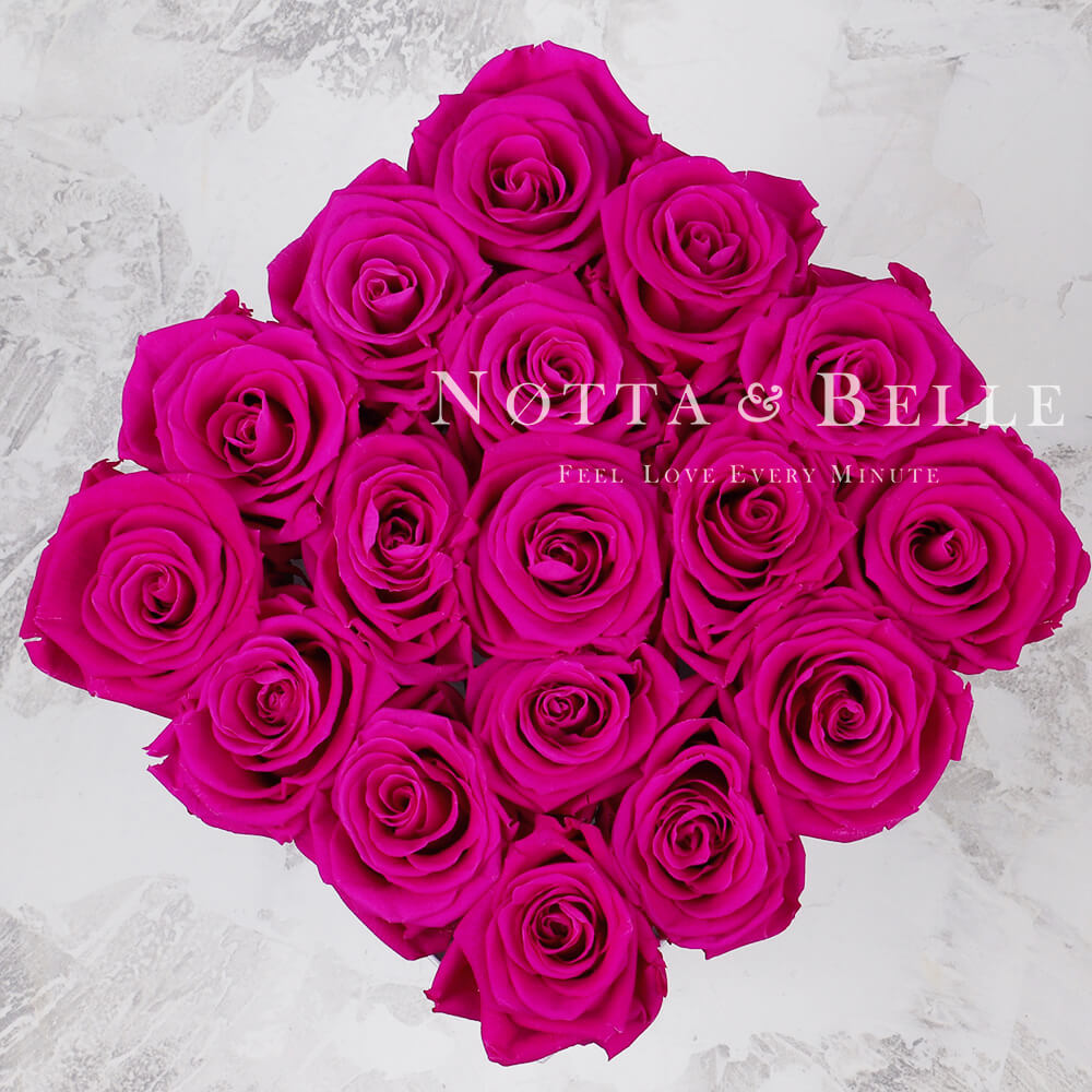 Forever Fuchsia roses in square black box - 17 roses
