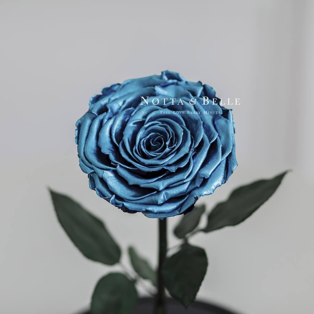 Темно-бирюзовая роза в колбе - King