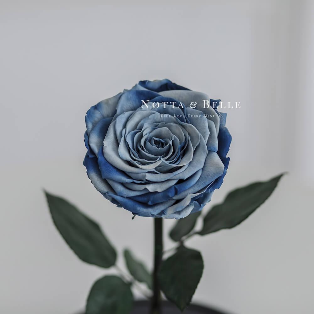 Сине-голубая роза в колбе - King