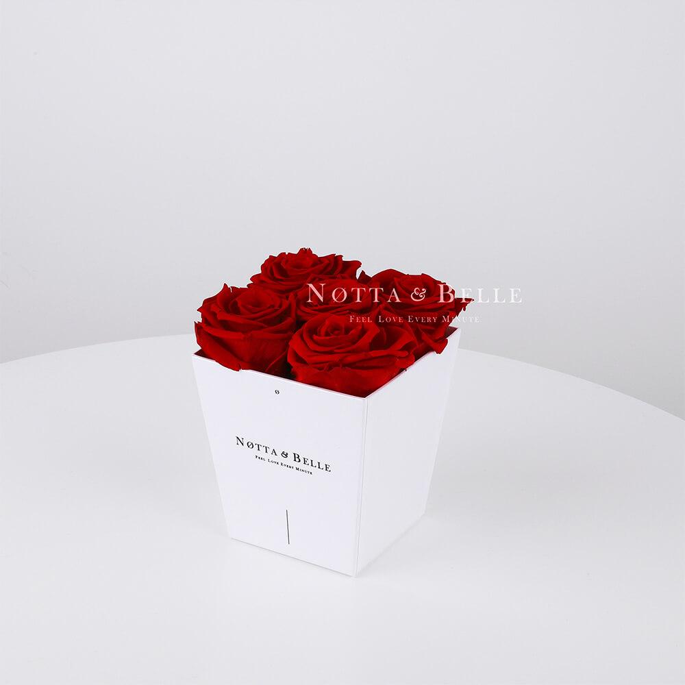 Долговечный букет из 5 бордовых роз - №061