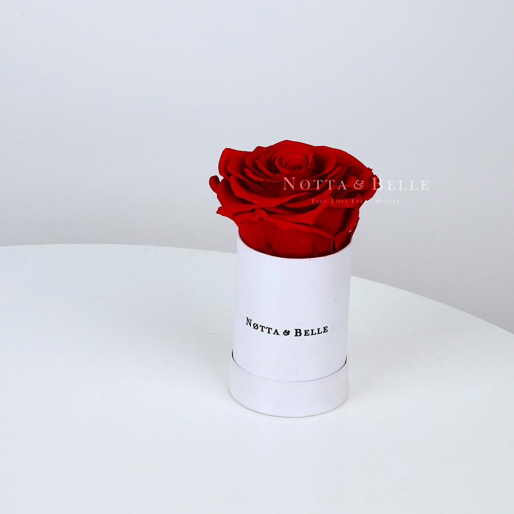 Бордовая роза в шляпной коробке - №1441
