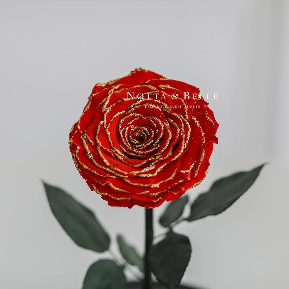 Красно-золотая роза в колбе - King