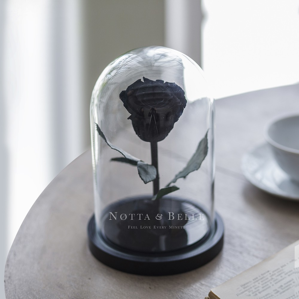 black rose in glass dome - mini
