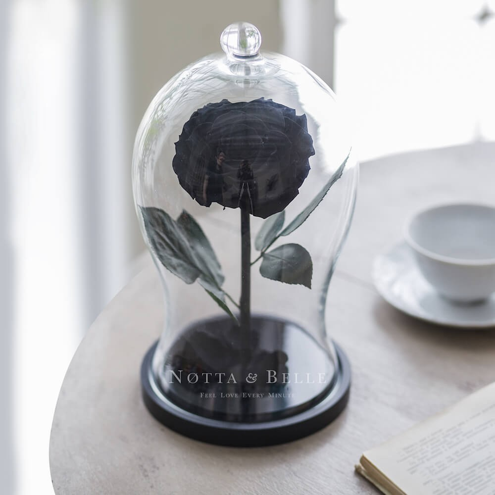 black rose in glass dome - premium x