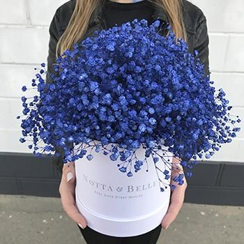 Букет из синей гипсофилы - Mini