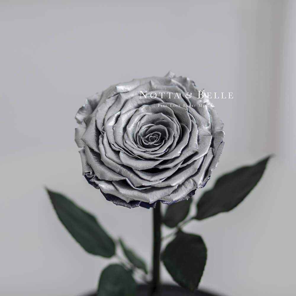 Роза в колбе серебряного цвета - King