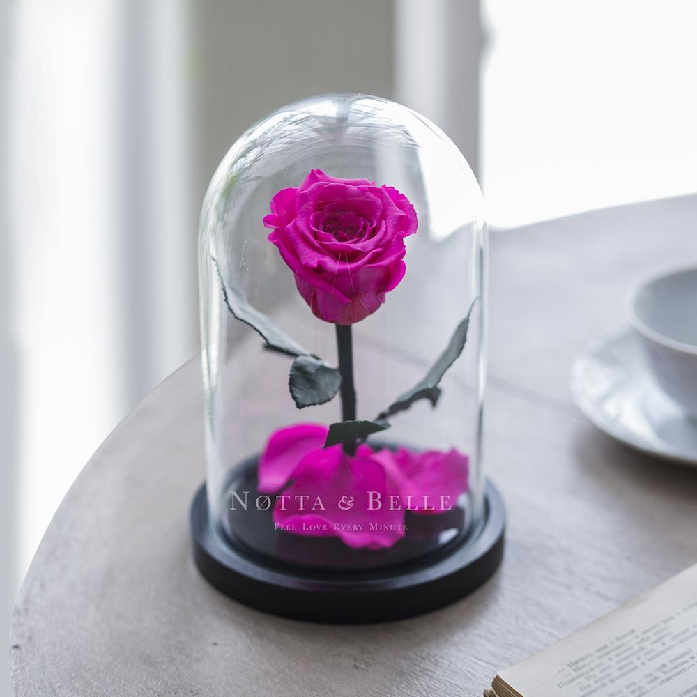 Mini bright pink Rose