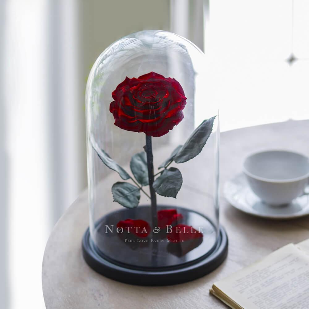 Бордовая роза в колбе King