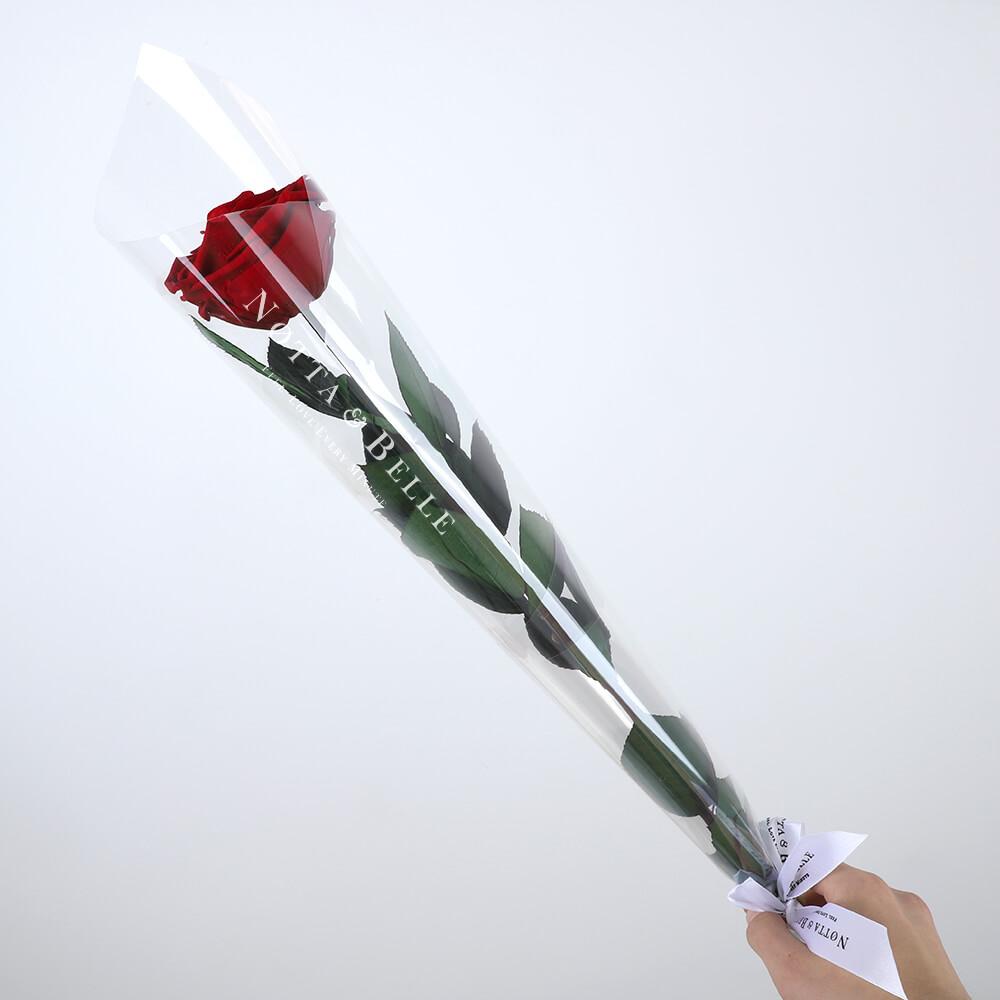 Бордовая роза на стебле - Premium