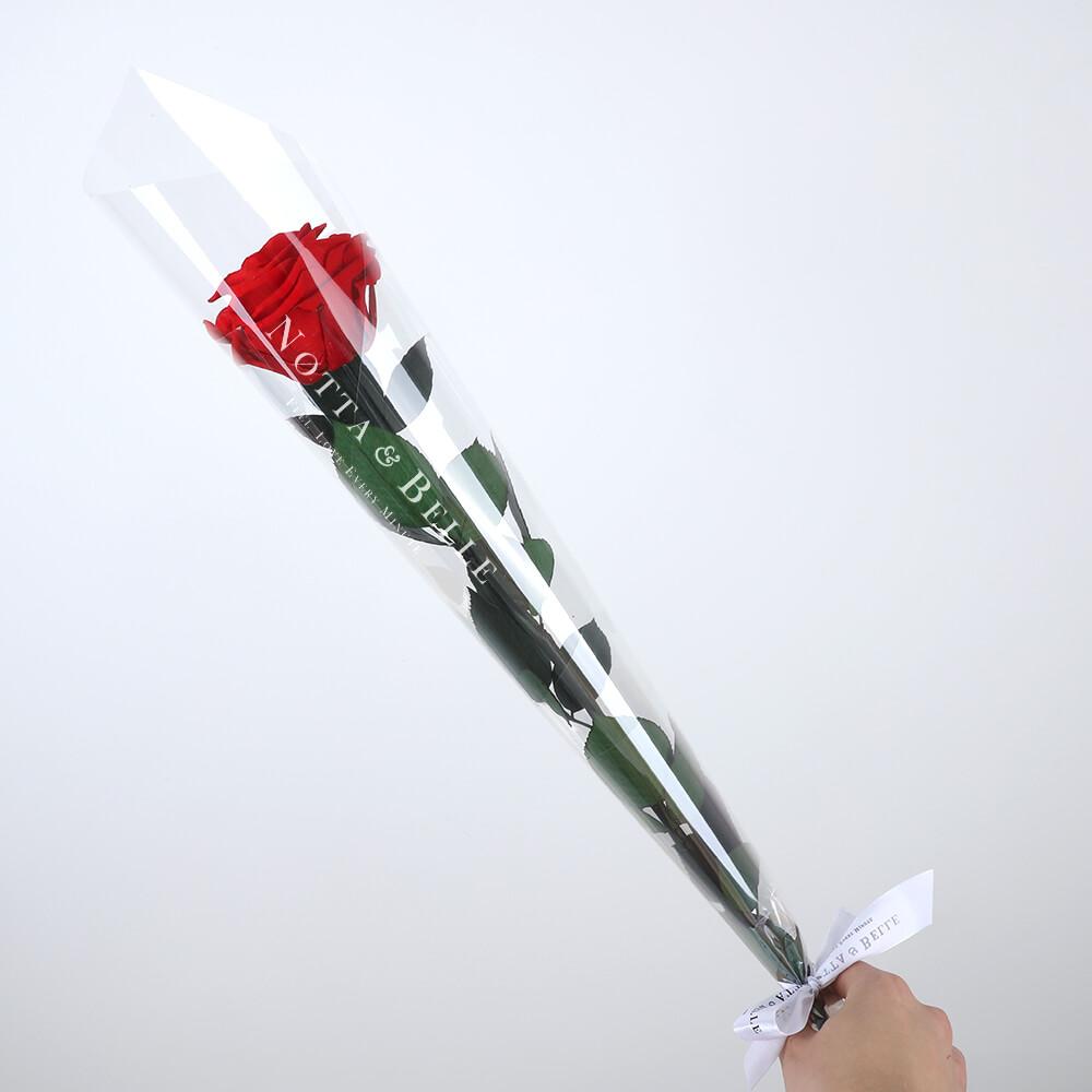 Красная роза на стебле - Premium