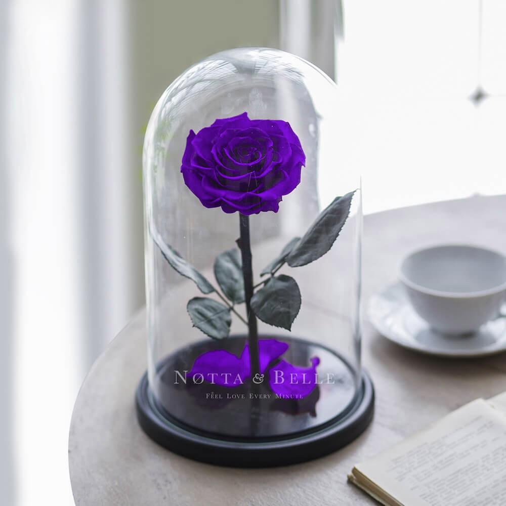Фиолетовая роза в колбе King
