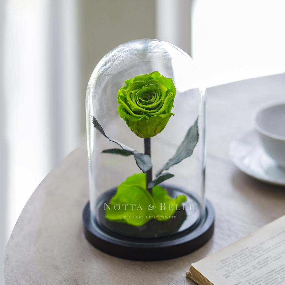 Салатовая роза в колбе - Mini