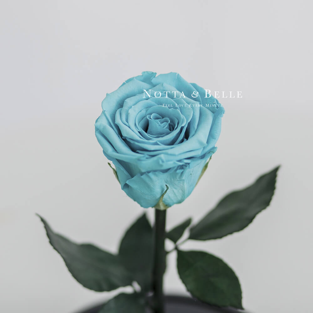 Бутон бирюзовой розы в колбе - Mini