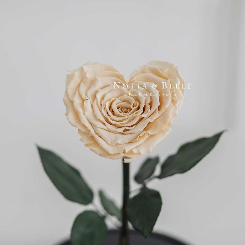 Бутон в форме сердца розы в колбе цвета шампань - Premium
