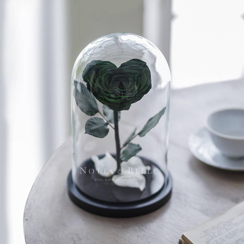 Темно Зеленая роза в колбе в форме сердца - Premium