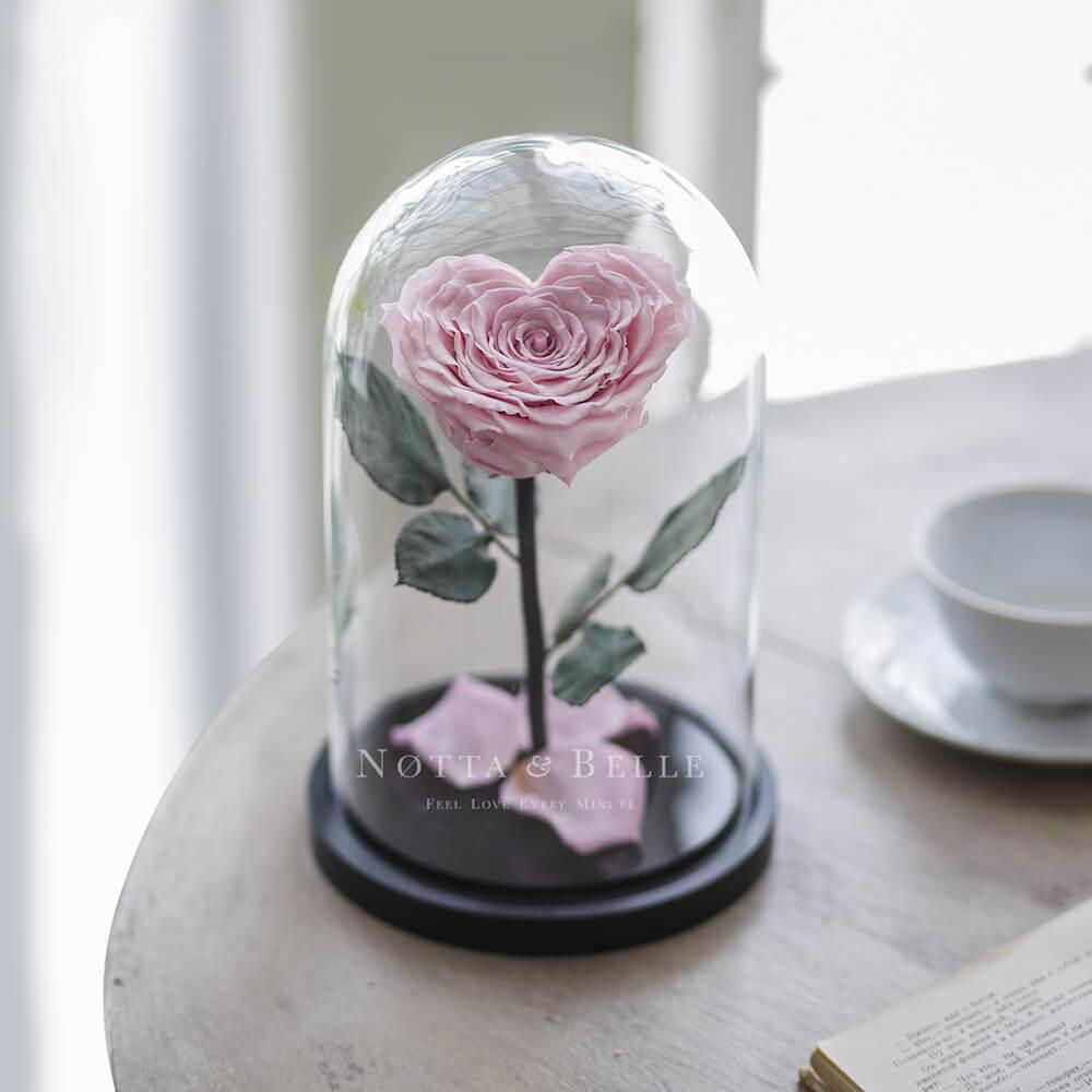 Нежно розовая роза в колбе в форме сердца - Premium