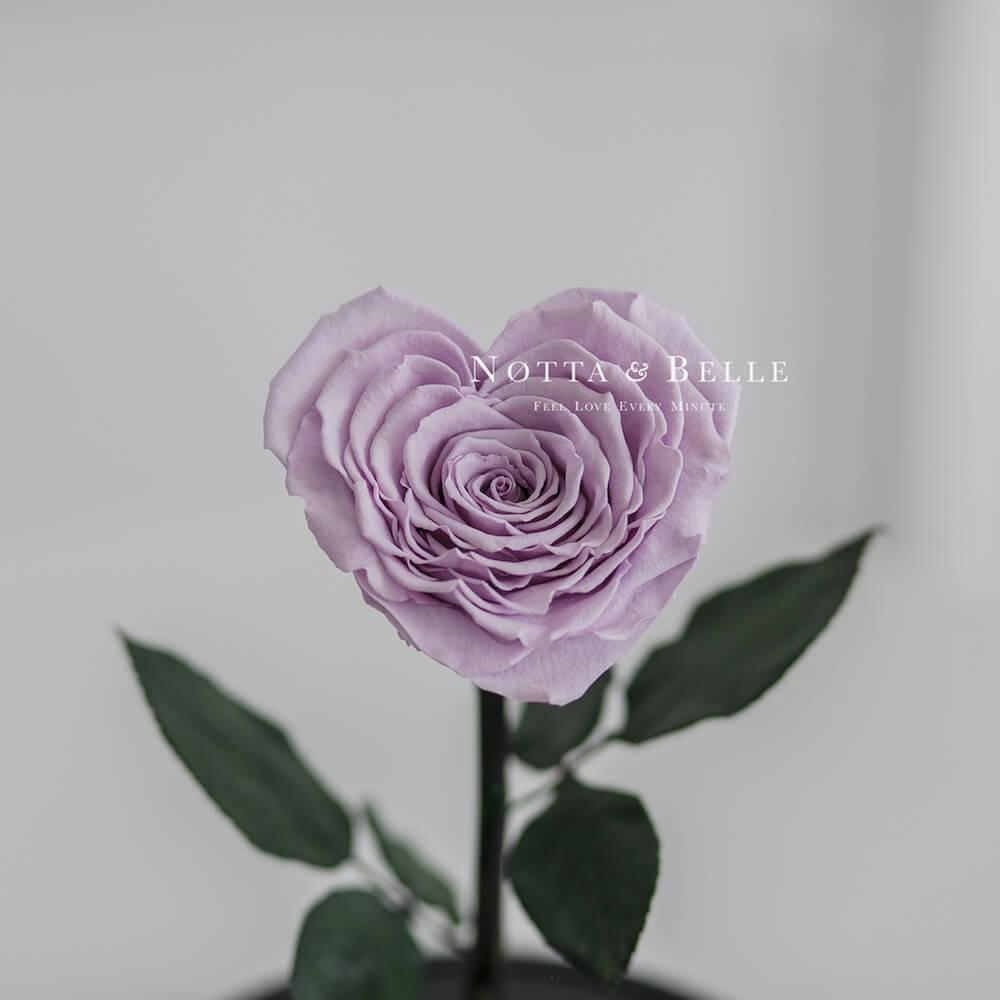 Лавандовая роза Premium в форме сердца