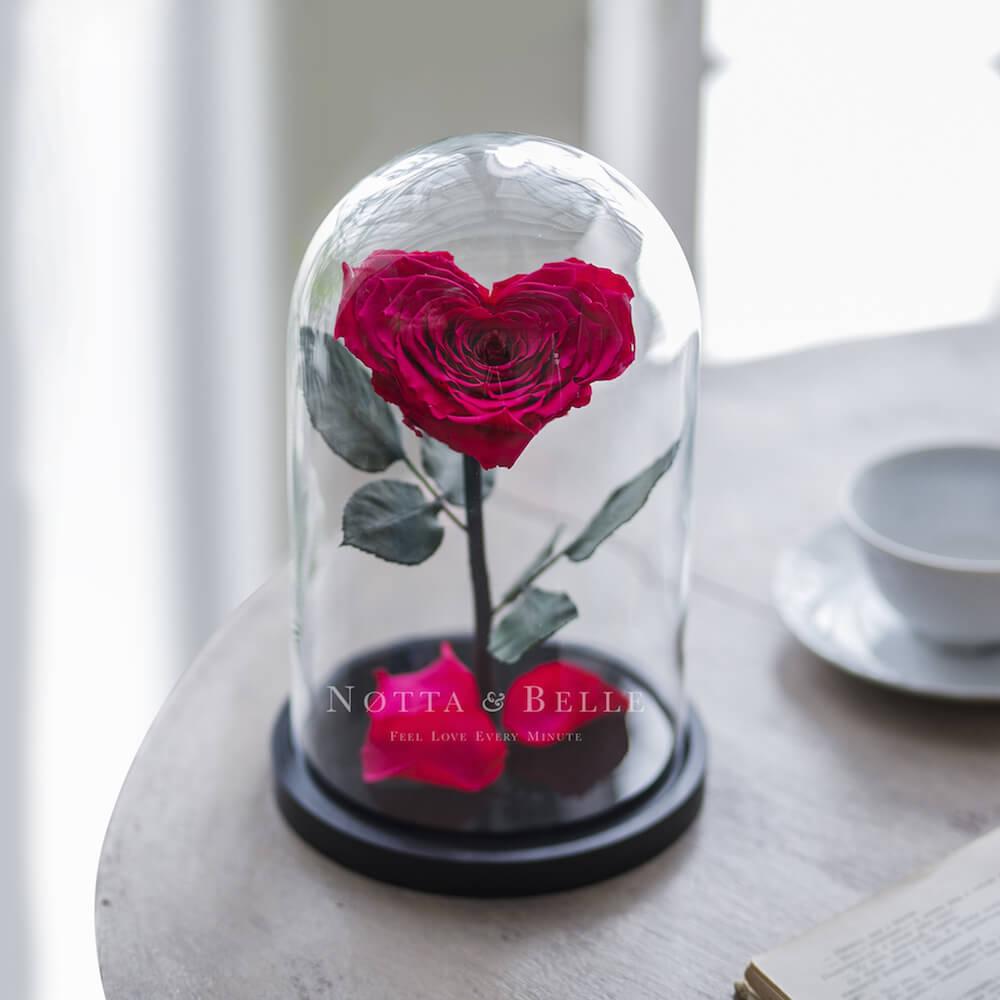 Роза в колбе цвета фуксии в форме сердца - Premium