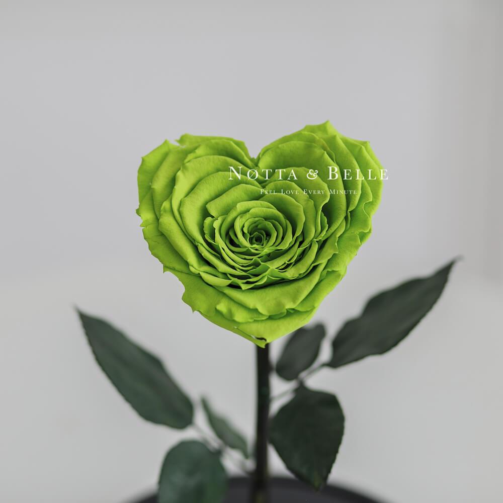 Салатовая роза Premium в форме сердца