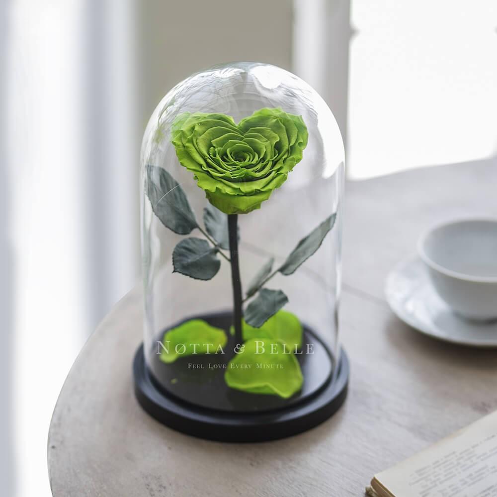 Салатовая роза в колбе в форме сердца - Premium