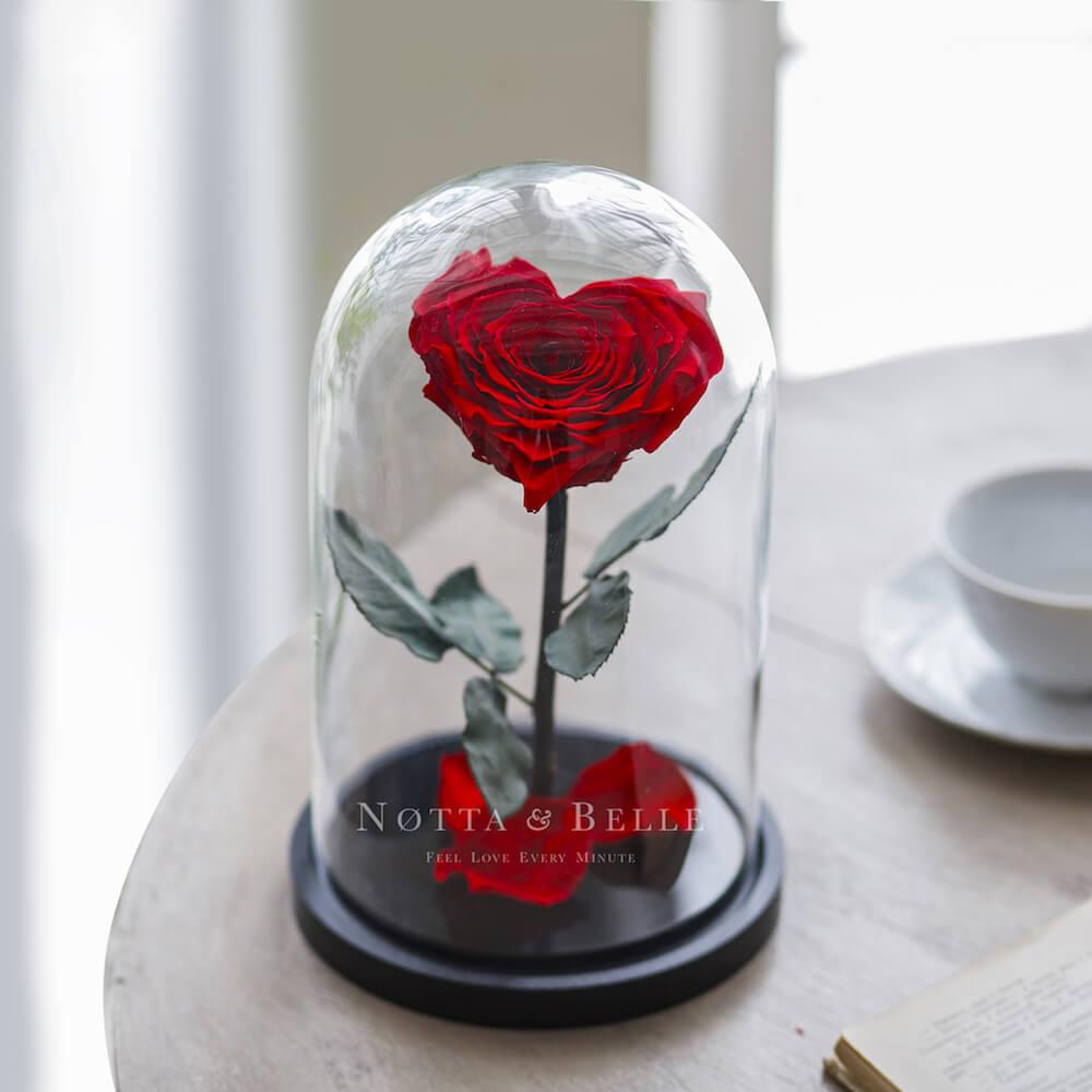 Красная роза в колбе в форме сердца - Premium