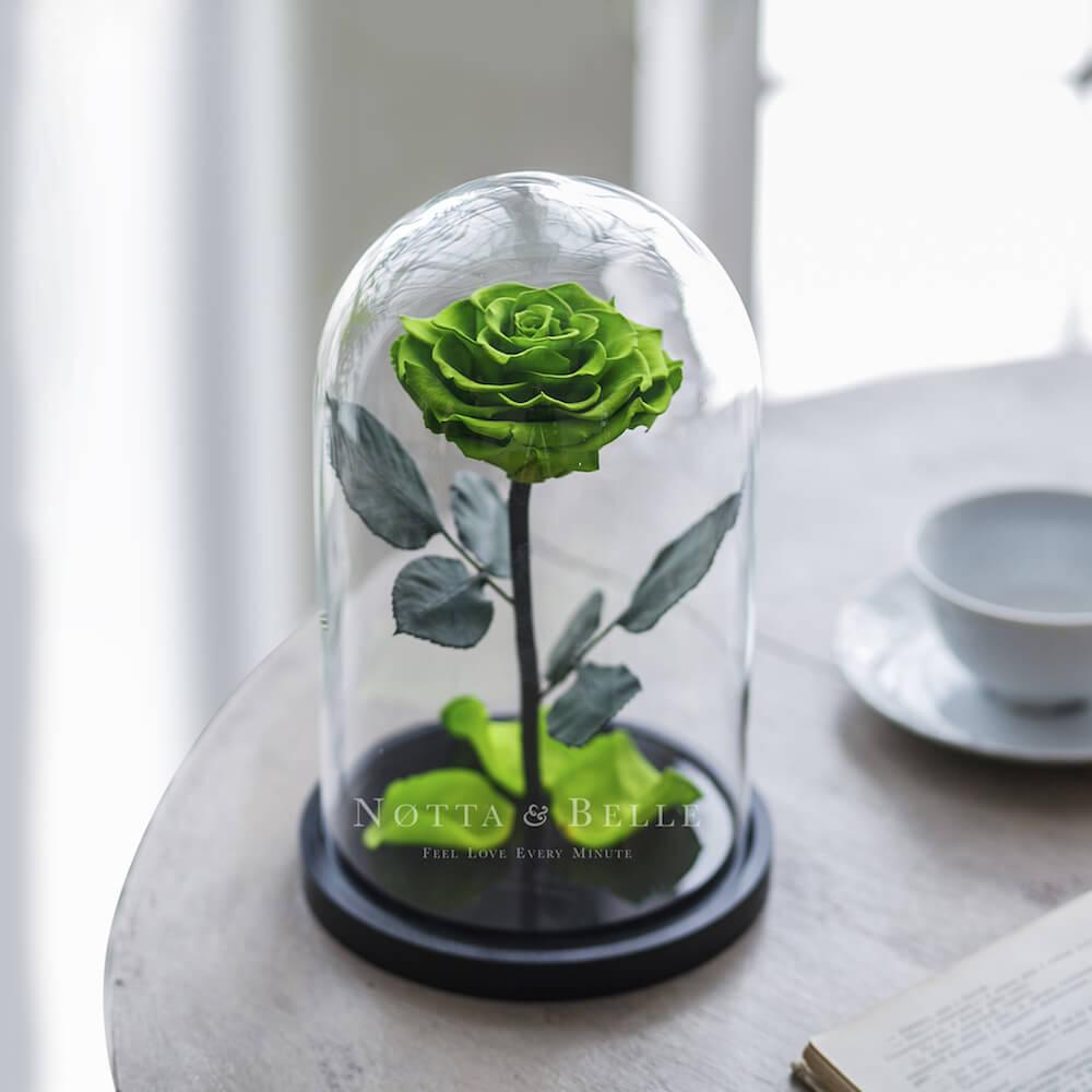 Салатовая роза в колбе Premium