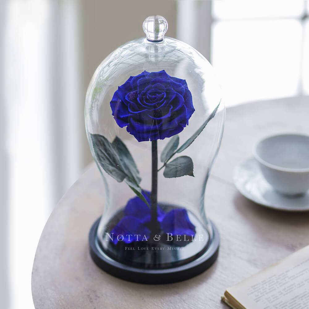 Синяя роза в фигурной колбе - Premium X