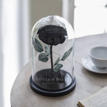 forever black rose in glass dome - premium