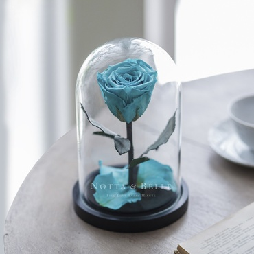 forever turquoise rose in glass dome - mini