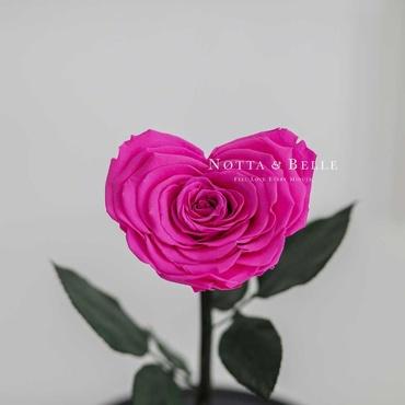 Бутон в форме сердца ярко розовой розы в колбе - Premium
