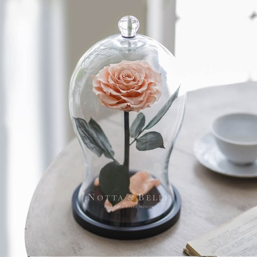 Персиковая роза в фигурной колбе - Premium X