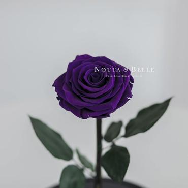 Бутон фиолетовой розы в фигурной колбе - Premium X