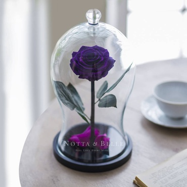 Фиолетовая роза в фигурной колбе - Premium X
