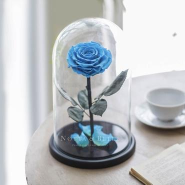 Голубая роза в колбе - King