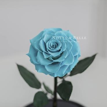 Бутон бирюзовой розы в колбе - Premium