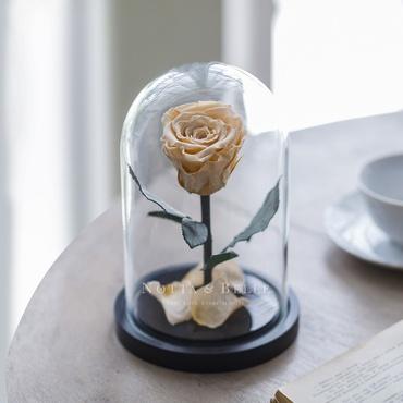 Роза в колбе цвета шампань - Mini
