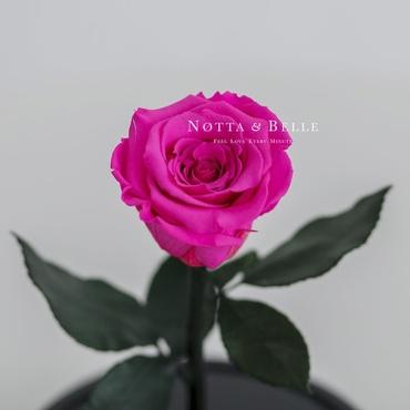 Бутон ярко розовой розы в колбе - Mini