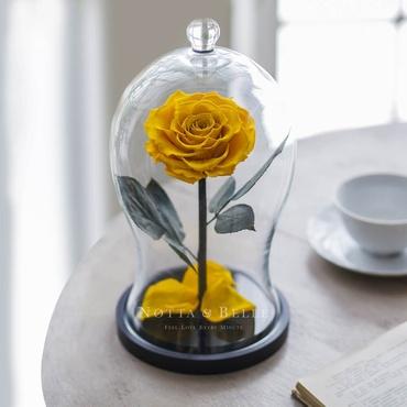 Желтая роза в фигурной колбе - Premium X