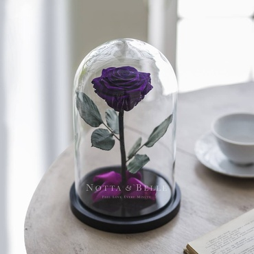 Фиолетовая роза в колбе - Premium