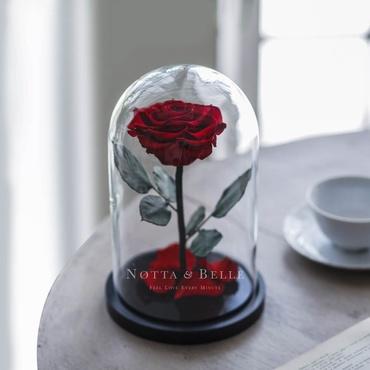 Бордовая роза в колбе - Premium