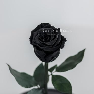 Бутон черной розы в колбе - Mini