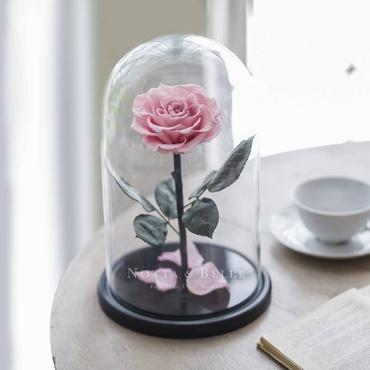 Нежно розовая роза в колбе - King