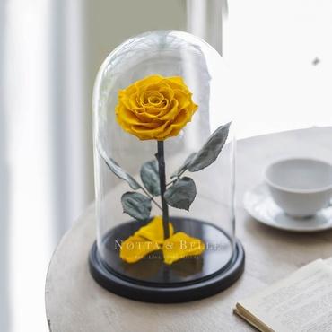 Желтая роза в колбе - King