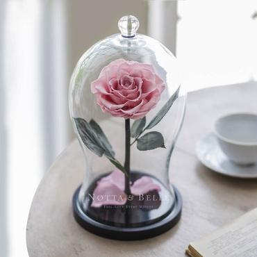Нежно Розовая роза в фигурной колбе - Premium X