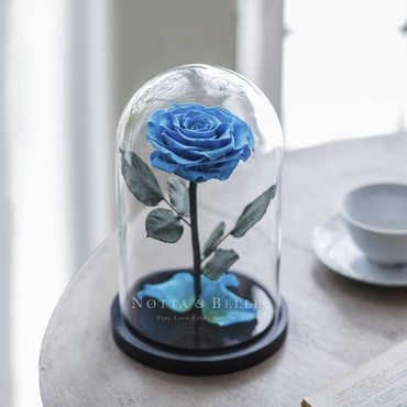 forever light blue rose in glass dome - premium