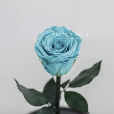 forever turquoise rose - mini