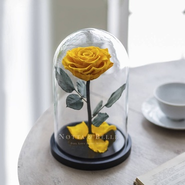 forever yellow rose in glass dome - premium