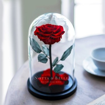 rose ternelle cadeaux labor s partir de roses notta belle. Black Bedroom Furniture Sets. Home Design Ideas