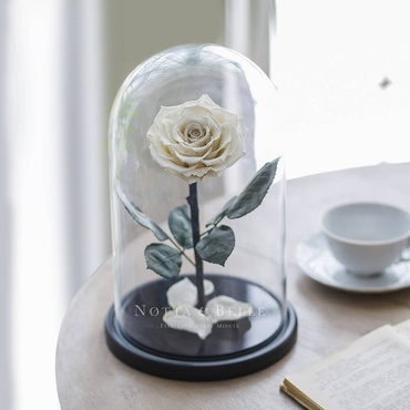 Белая роза в колбе - King