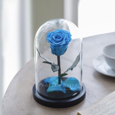 Голубая роза в колбе - Mini